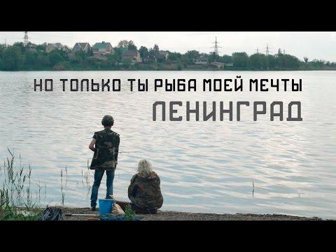 ты ты ты только ты песня. Ленинград - Но только ты-рыба моей мечты слушать онлайн mp3