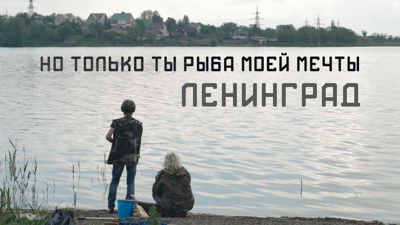 гр ленинград рыба моей мечты скачать