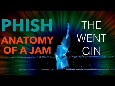 Phish - Anatomy of a Jam - 8.17.1997 Bathtub Gin - The Great Went