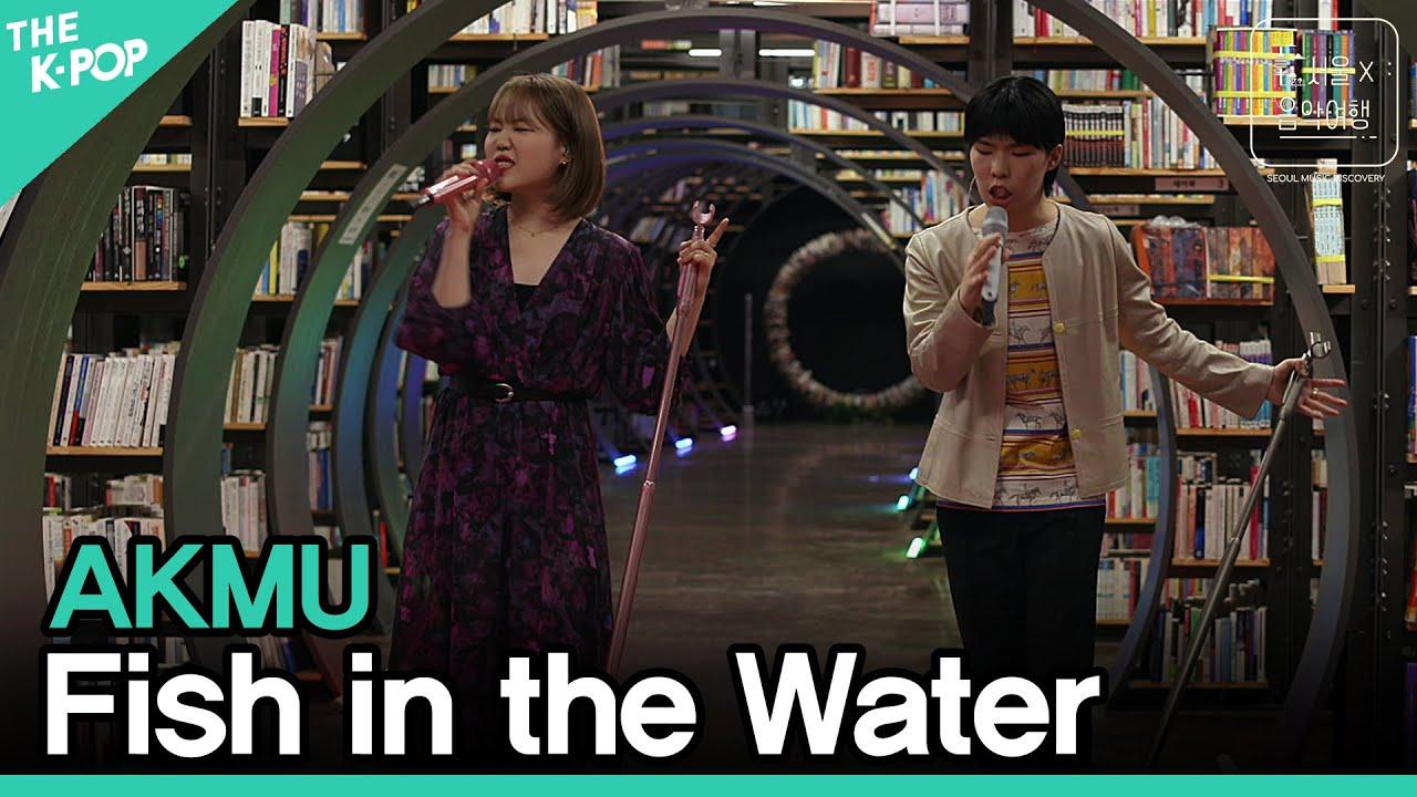 AKMU - 물 만난 물고기ㅣ서울X음악여행(SEOUL MUSIC DISCOVERY) 3편