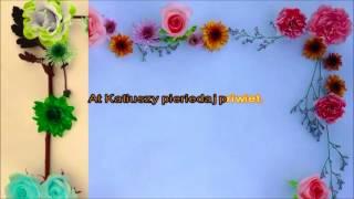 Karaoke - Katiusza - Romanse Rosyjskie