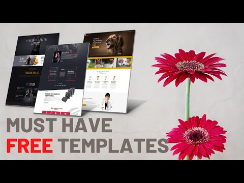 Free Download HTML5 Website Templates 2020