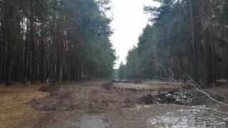 Как сейчас выглядит Тропа здоровья в Солигорске. Будет благоустройство