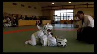 AMATEUR MMA ALL JAPAN CHAMPIONSHIPS SAMURAI GATE 2011 Jr.MMA -20kg...