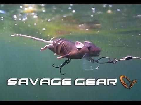 Savage Gear 3D Rat ( Rad ) swimming test