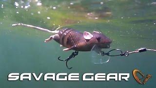 Savage Gear 3D Rad video
