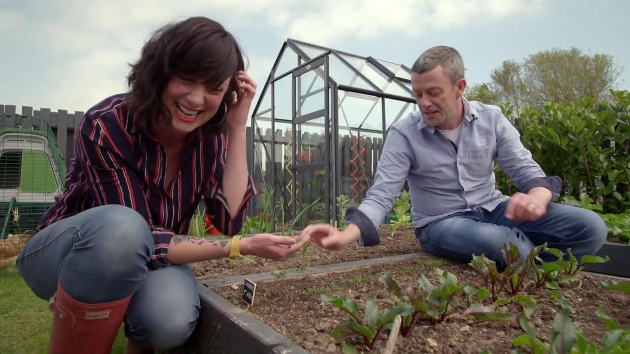 Download Carrot Growing Guide- GROW COOK EAT