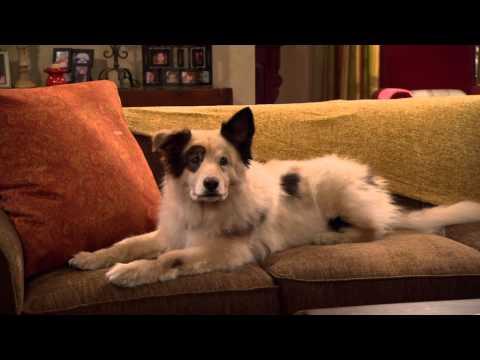 Собака точка ком (Сезон 3 Серия 3)
