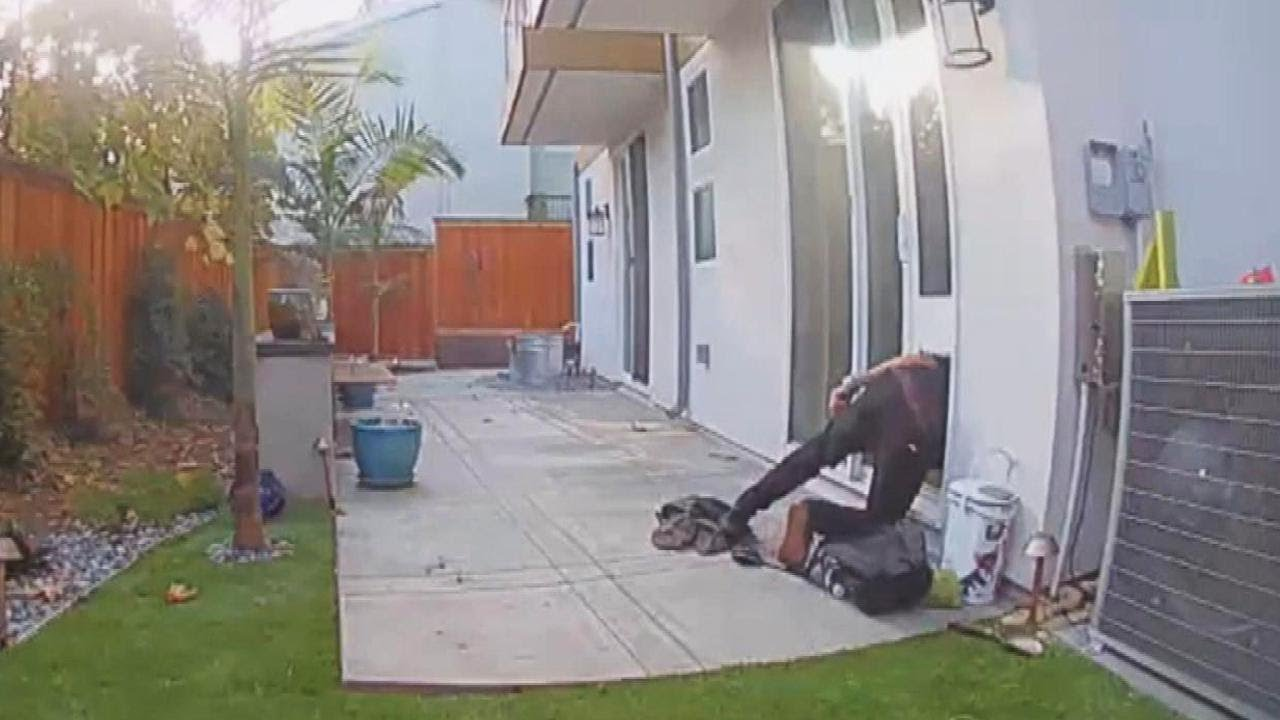 stranger-tries-breaking-into-home-using-doggy-door