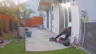 Stranger Tries Breaking Into Home Using Doggy Door