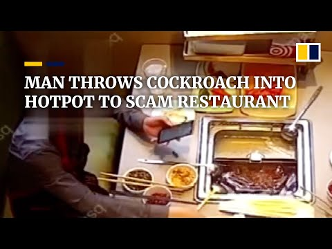 Man throws cockroach into hotpot to scam restaurant in China