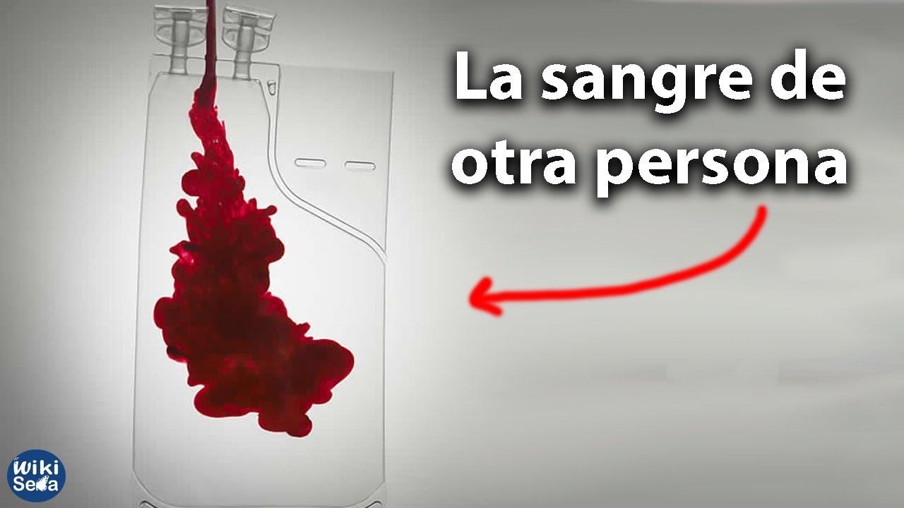 ¿Qué Pasa Si Recibes Sangre de Otro?
