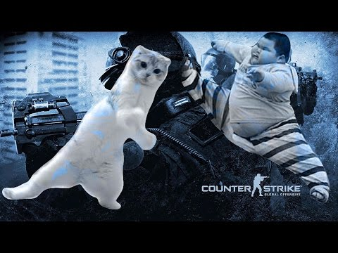 Somebody dance with me xD - CS:GO [60FPS][HD+]