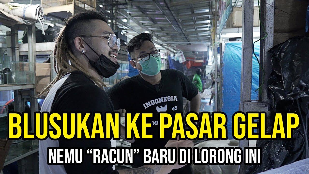 GREBEK PASAR GELAP DI JAKARTA!!! / HUNTING IKAN PREDATOR - KACAU DI RACUNIN TERUS SAMA JAMM_VLOG!!!