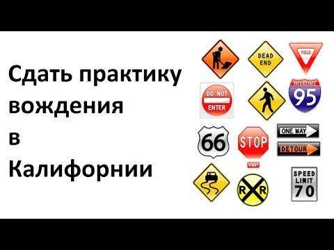 Проверить авто по гос номеру - Портал ПроАвто