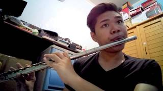Never Enough - The Greatest Showman | Flute Cover