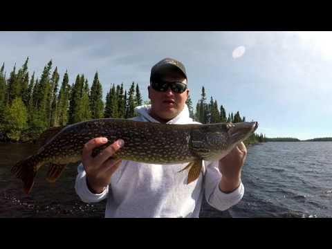 Lake Pakashkan Ontario Canada Fishing (Ron English Group)