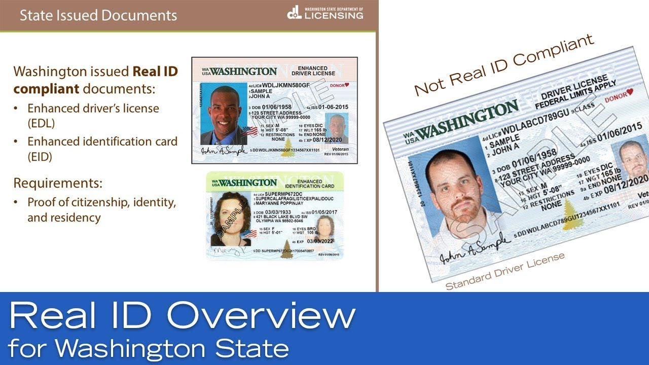 insurance on drivers license wa