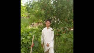 shakira pashto  songs 2010