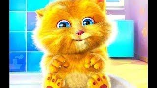 Рыжий кот Мурлыка - КИС КИС МЯУ - детская песня