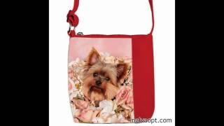 видео Алиэкспресс сумки для детей: школьные ранцы, детские сумочки и кошельки, сумки через плечо с AliExpress
