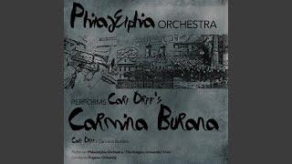 Carmina Burana: XIII. Ego sum abbas
