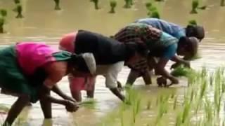 Vethathiri maharishi Ulaganala valthu