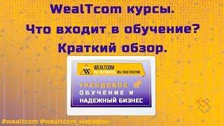WealTcom курсы | Что входит в обучение | Краткий обзор