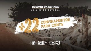 #Resumo Confina Brasil - batemos a marca de 1 milhão de bois mapeados, mas os trabalhos continuam