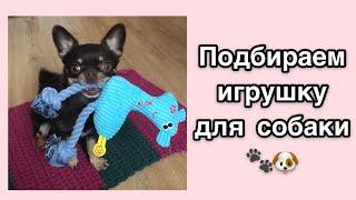 как подобрать игрушку для собаки. Выбираем идеальную игрушку для песика