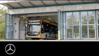 Mercedes-Benz Buses   Premiere Heidelberg & Mannheim   Erste eCitaro Linie der Welt   DE