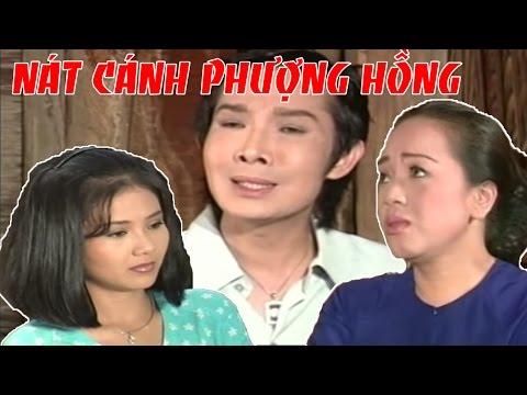VŨ LINH THANH NGÂN | Nát Cánh Phượng Hồng | Cải Lương Xã Hội