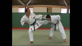Уроки рукопашного боя. Изучаем приемы самозащиты при исполнении ката Нидзюшихо в каратэ(Эти уроки рукопашного боя помогут изучить приемы самозащиты не только желающим чувствовать себя уверенно..., 2016-07-23T20:31:48.000Z)