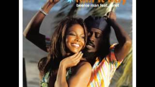 Janet Jackson   Beenie Man Feel It Boy Joint Custody Ext Mix