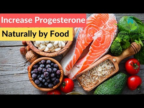 how-to-increase-progesterone-naturally-by-food-and-herbs?-|-healthyfoods4life