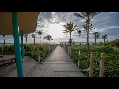 Curso Miami. Capitulo 2. Areas Miami