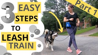 Loose Leash Walking: Attention and Motion (1/3)