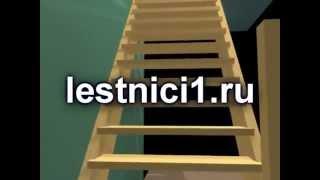 деревянные лестницы на заказ.mp4(http://lestnitsy-nigniy.ru http://lestnitsy-yaroslavl.ru http://moskva-lestnitsy.ru Элитные лестницы АМГ+ Закажите лестницу и получите 3D-прое..., 2012-03-12T20:21:52.000Z)