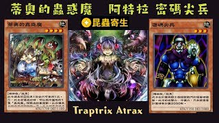 【遊戲王 Duel Links】136蒂奧的蟲惑魔Traptrix Dionaea 阿特拉的蟲惑魔Traptrix Atrax 密碼尖兵Cipher Soldier
