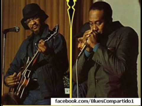 HOMESICK JAMES & SNOOKY PRYOR - American Blues Legends 73, Volkhaus Zurich, Switzerland. 1973