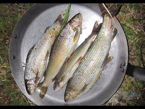 рыбалка олег таймень