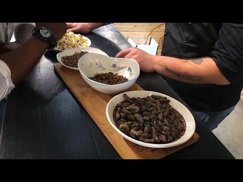 Güney Afrika'da lüks bir restoranın özel menüsü böcekli yemekler