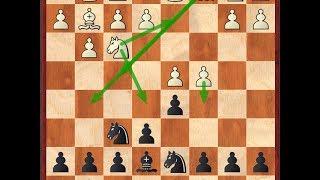 Шахматы - Как играть дебют - Каталонское начало. Теория. Глава 1. Редкие 7 хода белых
