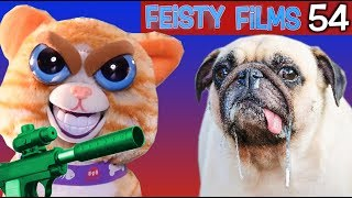 Feisty Films Ep. 54: Cat Tries to Terminate Dog!