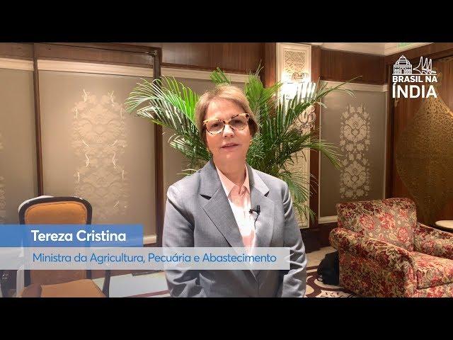 Ministra Tereza Cristina comenta oportunidades em viagem à Índia