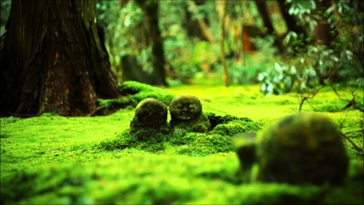 Populaire The Japanese Flute Sounds Of Nature,(Meditation Healing Zen  FM69