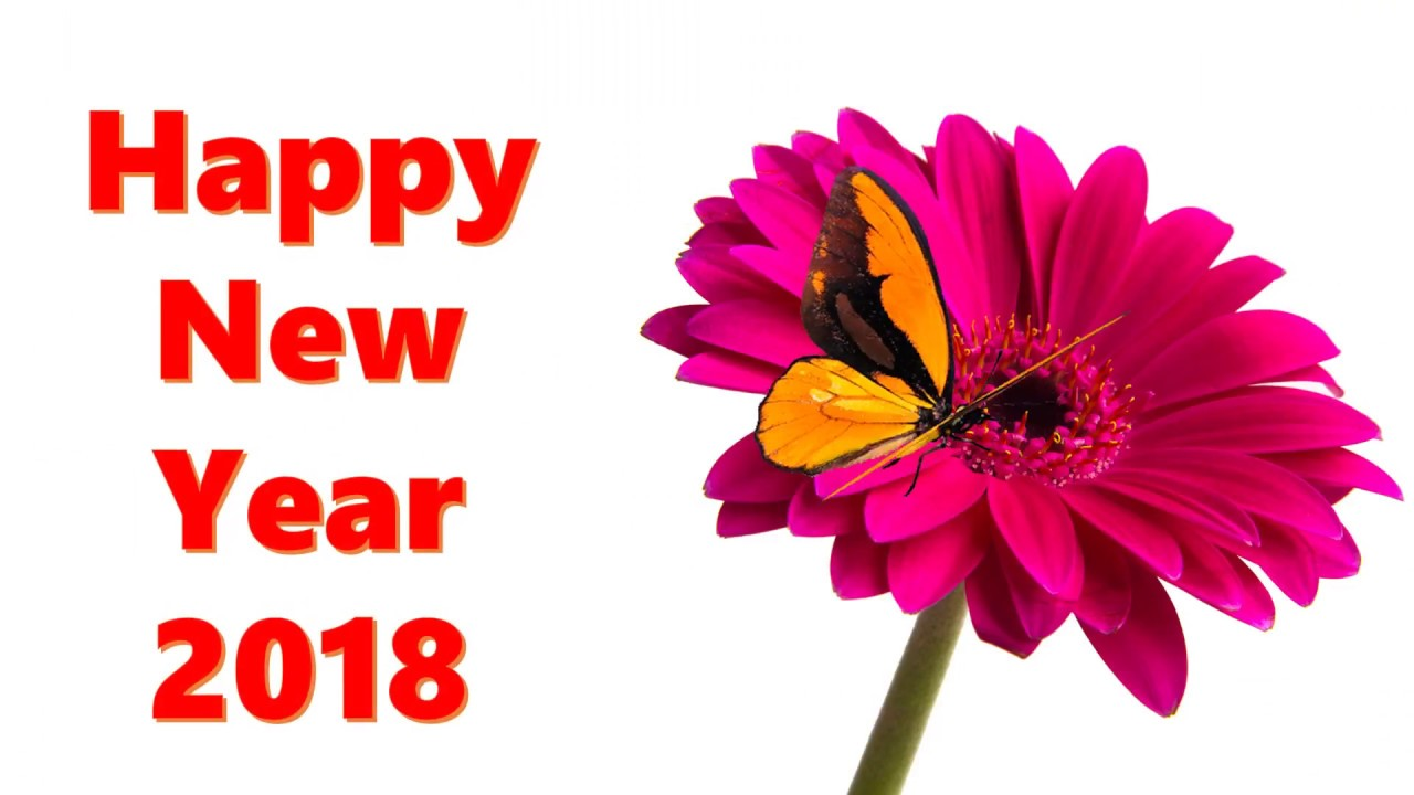 2018 Happy New Year Message, New Year SMS, whatsapp video ...