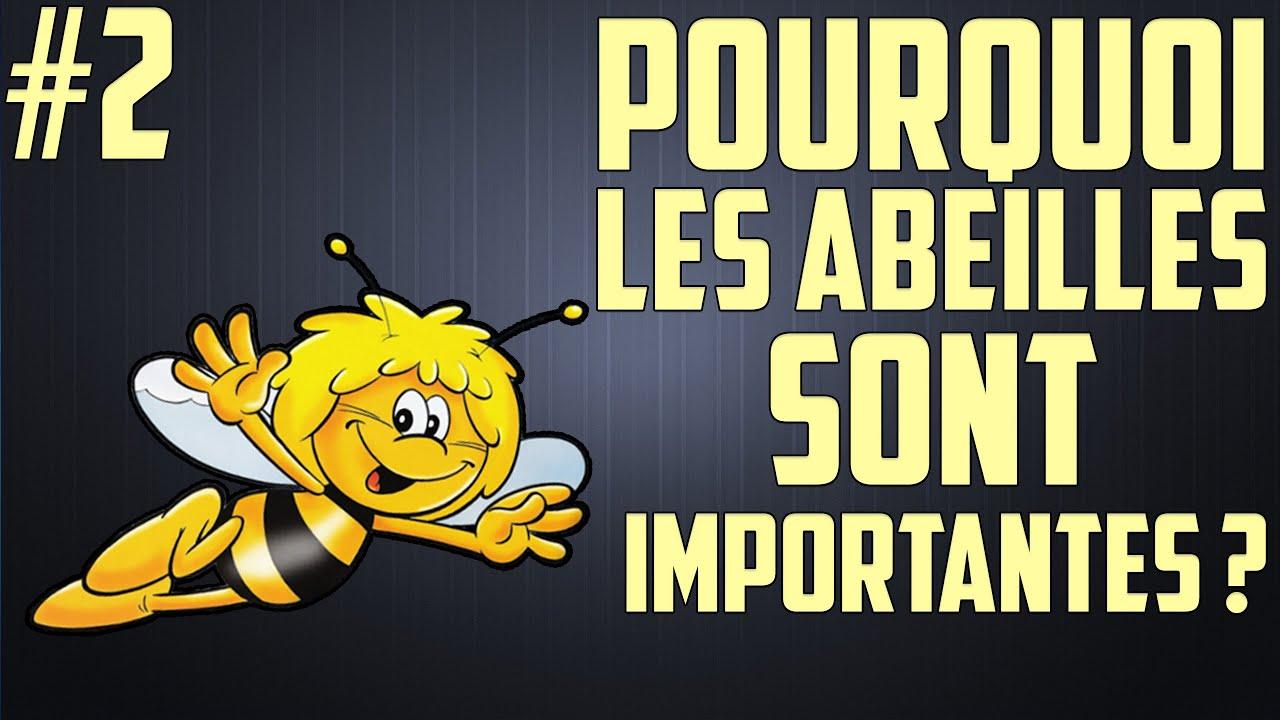 Pourquoi les abeilles sont importantes?