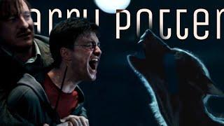Harry Potter - Nothing breaks like a heart