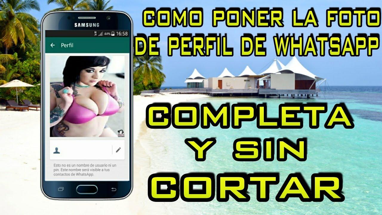COMO COLOCAR LA FOTO DE PERFIL DE WHATSAPP COMPLETA Y SIN CORTAR ...